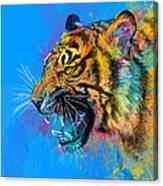 Crazy Tiger Canvas Print