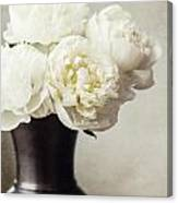 Cream Peonies In A Rustic Vase Canvas Print
