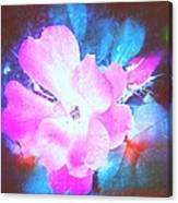 Creative Energies Canvas Print