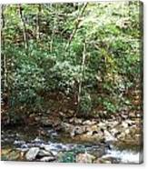 Creek 13 Canvas Print