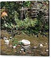 Creek 5 Canvas Print