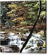 Creek 8 Canvas Print