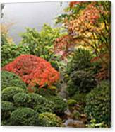 Creek At Japanese Garden In The Fall Canvas Print