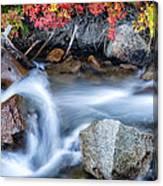 Creek At North Lake Ca_1 Canvas Print
