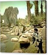 Creek At Jackalope Ranch Palm Springs Canvas Print