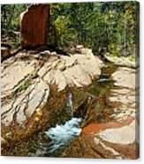 Creek Crossing Canvas Print