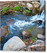 Creek Entering Andreas Canyon In Indian Canyons-ca Canvas Print