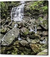 Creek Falls Canvas Print
