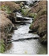 Creek In Alabama Canvas Print