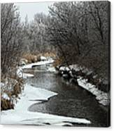 Creek Mood Canvas Print