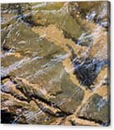 Creek Reflections Canvas Print