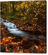 Creekside Colors Canvas Print