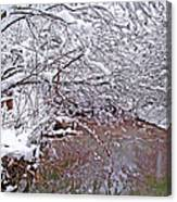 Creekside In The Snow 2 Canvas Print