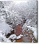 Creekside In The Snow 3 Canvas Print