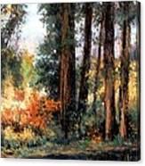 Creekside No 2 Canvas Print