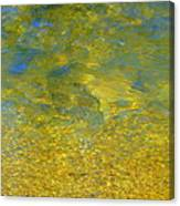 Creekwater Abstract Canvas Print