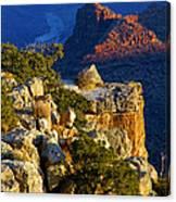 Creeping Morning Canyon Light Canvas Print