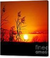 Creole Trail Sunset Canvas Print