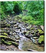 Cresheim Creek Canvas Print