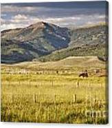 Crested Butte Ranch Canvas Print