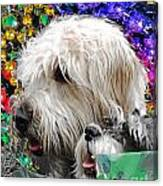 Crewe Of Mutts Mardi Gras Parade Baton Rouge Doggies Canvas Print