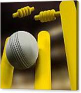 Cricket Ball Hitting Wickets Night Canvas Print