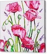Crimson Poppies Canvas Print