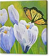 Crocus And Monarch Butterfly Canvas Print