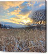 Crooked Lake Willows Canvas Print