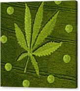 Crop Circles Canvas Print