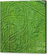 Crop Circles Canvas Print