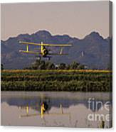 Crop Duster Applying Seed To Rice Field Canvas Print