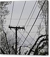 Crossing Power Lines Canvas Print