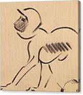 Crouching Monkey Canvas Print