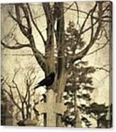 Crow's Cross Canvas Print