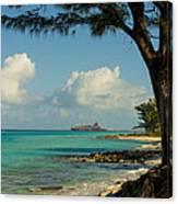 Cruise Bimini Canvas Print