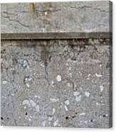 Crumbling Wall 1 Canvas Print