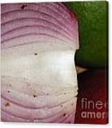 Crumby Onion  Canvas Print