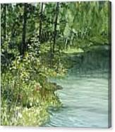 Crystal Bog Canvas Print