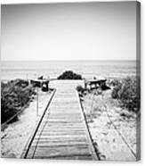 Crystal Cove Overlook Black And White Picture Canvas Print