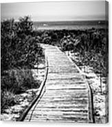 Crystal Cove Wooden Walkway In Black And White Canvas Print
