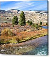 Crystal Creek In The Gros Ventre Canvas Print