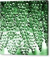Crystal Green Canvas Print