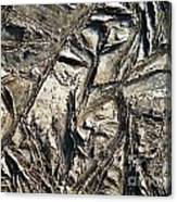 Crystal Muck Canvas Print