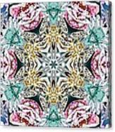 Crystal Mystery Canvas Print