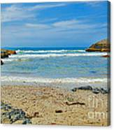 Crystal Waters - Port Macquarie Beach Canvas Print