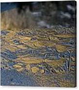 Crystalline Surface Of Mirror Lake In Yosemite Valley Canvas Print