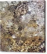 Crystalline Water Canvas Print