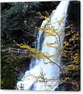 Cullasaja's Dry Falls Canvas Print