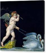 Cupid Being Led By A Pair Of Swans Canvas Print